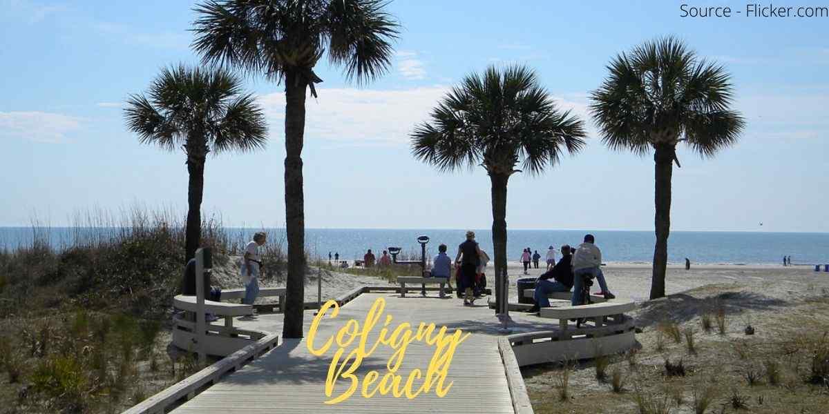 Coligny Beach beaches near south carolina